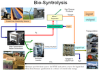 Biosyntrolysis
