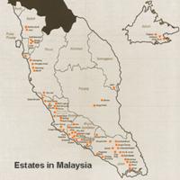 Kumpulan_guthrie_malay_map
