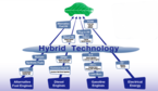 Toyota_ecopyramid